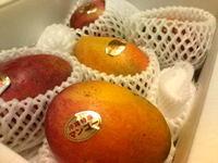 20080805_mango