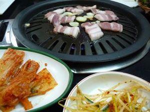20090209_korea_sankin
