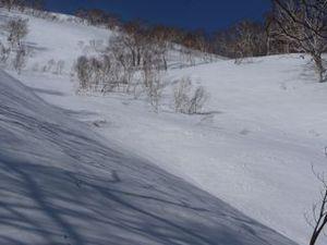 20090321_hirafu1