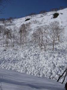 20090321_hirafu2