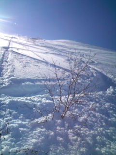 20100221_ski2